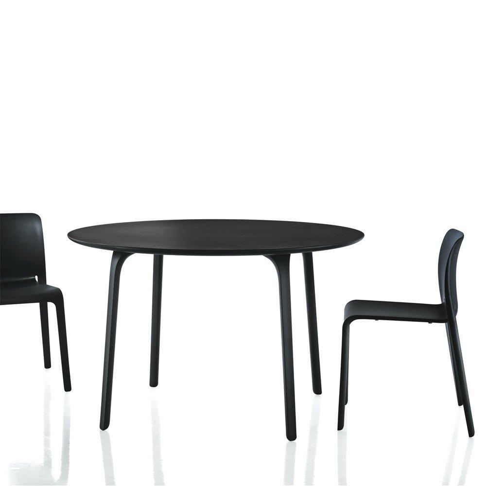 Sedia Chair First